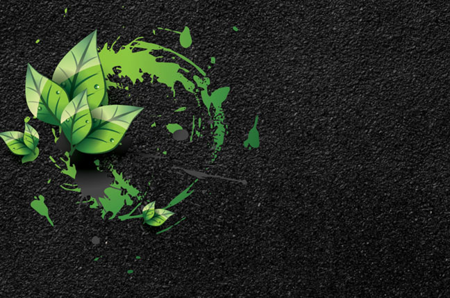 The Costs & Benefits of Going Green